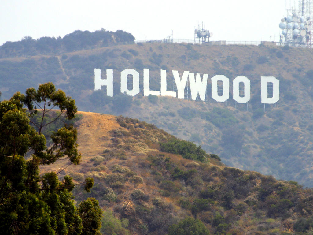 Hollywood Ca 100